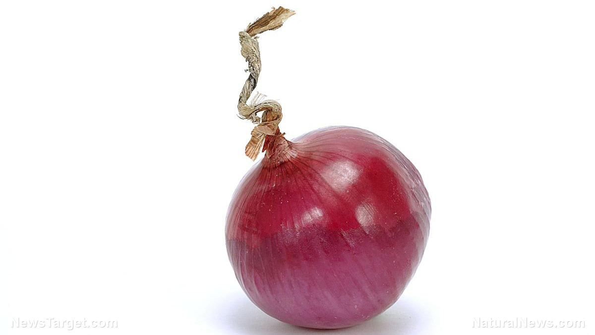 red onions research papers Specific varieties of red onions that you might find at a farmer's market or in a supermarket include redwing, red river, red zeppelin, red creole, southern belle red, red grano, red granex, and california early red.